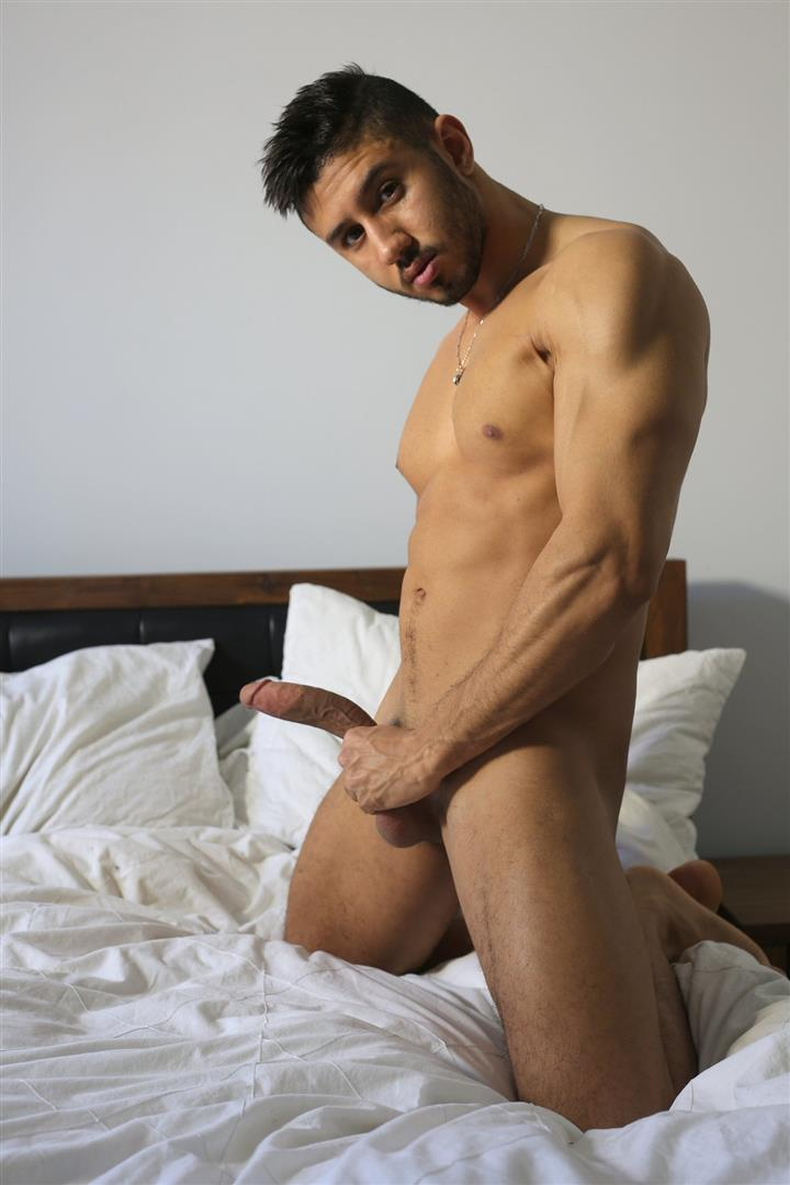 Men of Montreal Malik Big Arab Cock At The Stock Bar Pictures Amateur Gay Porn 13 Young Naked Moroccan Man Jerks His Big Arab Cock